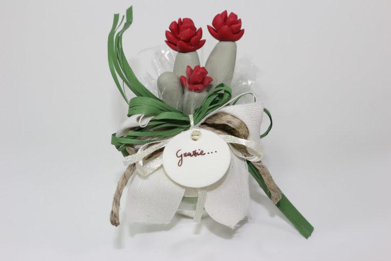 bomboniera pianta grassa con fioreGattacicova